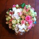 Immagineimmagini-da-scraicare-nella-cartella-fiori-in-fiore-001